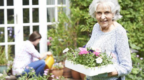 Los grandes beneficios para la salud de regar las plantas todos los días