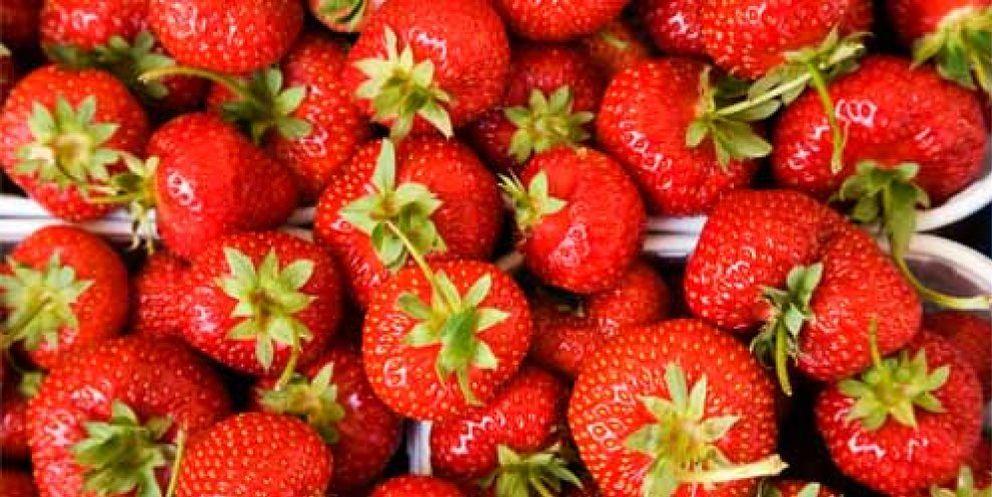 Foto: Si vas a beber, come fresas