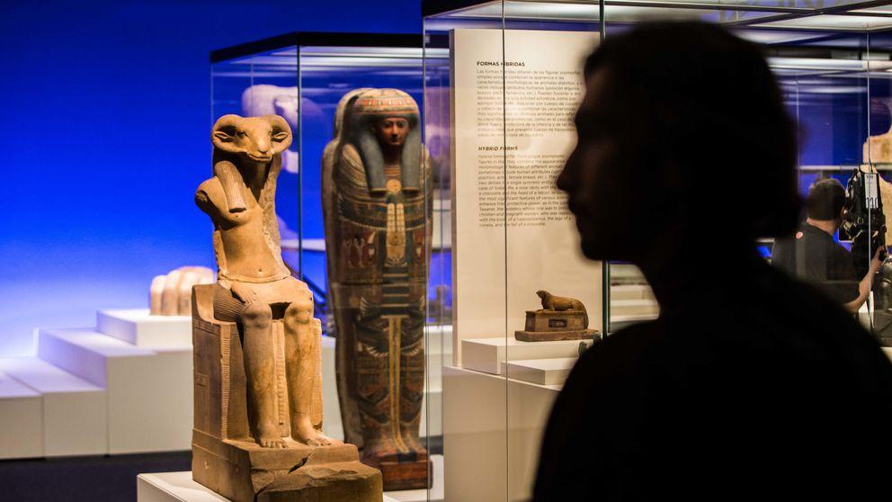 La fauna más salvaje del antiguo Egipto