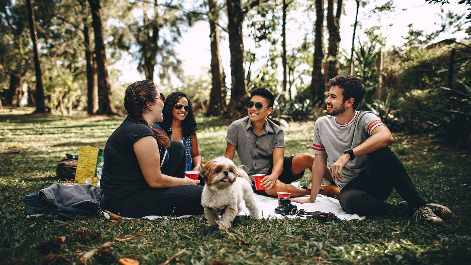 Foto: Grupo de amigos haciendo un picnic.