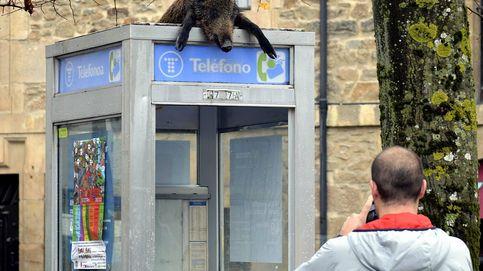 El Gobierno, a favor de quitar las cabinas telefónicas del servicio universal