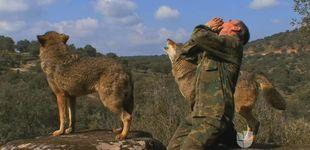 Post de El niño lobo de Sierra Morena ya vive como un ser humano