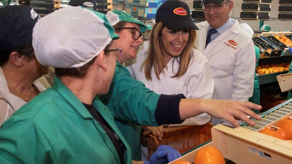 Foto: La candidata del PSOE-A a la reelección, Susana Díaz, conversa con varias trabajadoras durante su visita a la Cooperativa La Bella, en Lepe. (EFE)