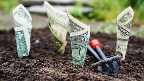 ¿Es la inversión alternativa un refugio para la empresa familiar?