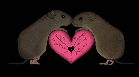 Así reacciona el cerebro tras reunirse con alguien amado tras mucho tiempo