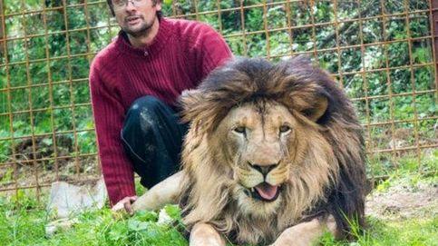 Un hombre muere atacado por el león al que crió como una mascota