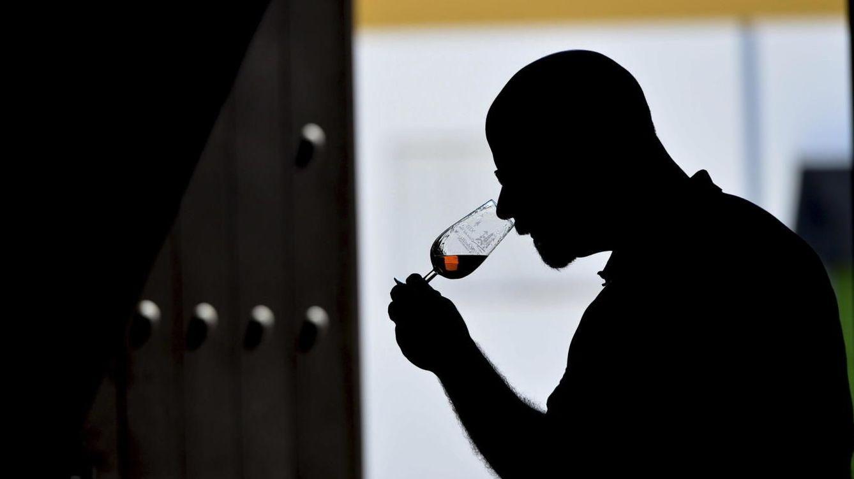 Foto: El vino de Jerez está de vuelta. (EFE)