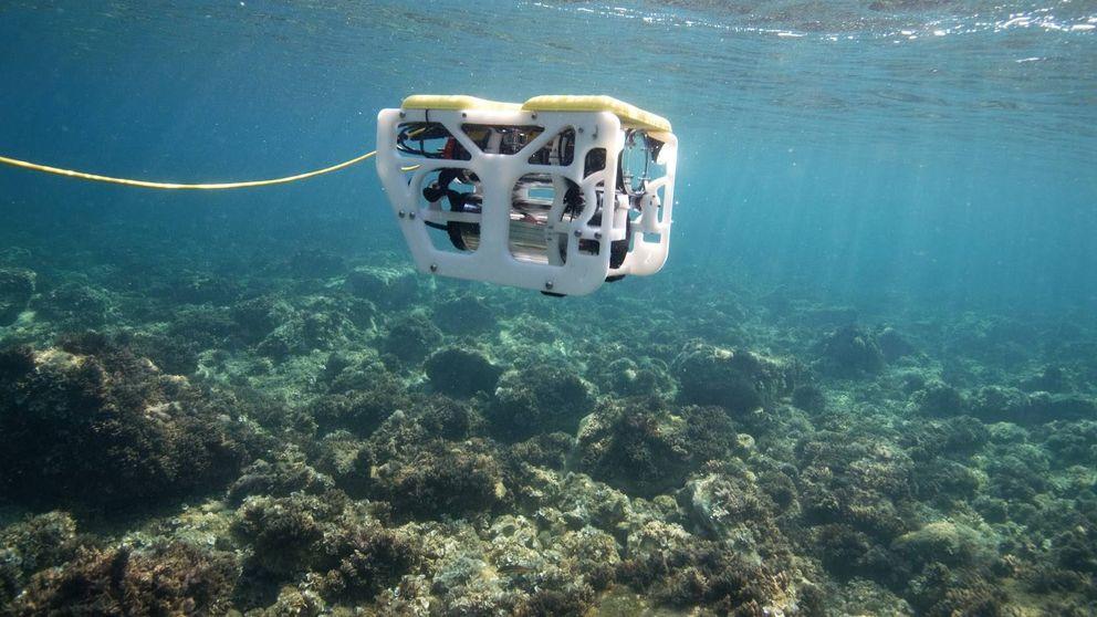 La idea murciana para explorar el fondo del océano: drones submarinos 'low cost'