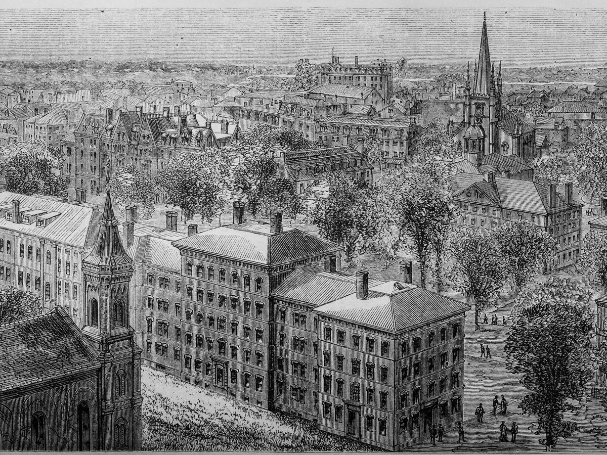 Foto: Ilustración que muestra una vista general de Harvard. (iStock)