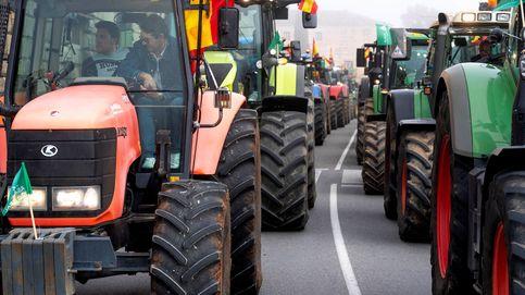 Los tractores y las banderas