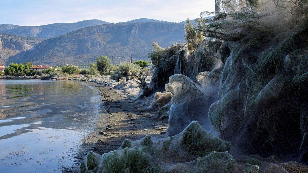 ¿De dónde viene la misteriosa telaraña de 300 metros que cubre una playa griega?
