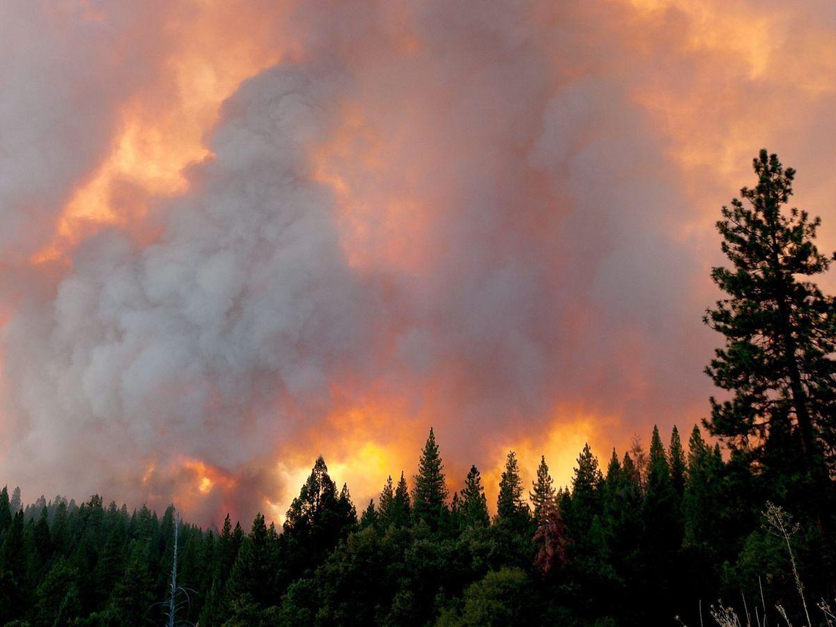 Foto: Un incendio fuera del Parque Nacional de Yosemite, en California, en una imagen de archivo. (EFE)