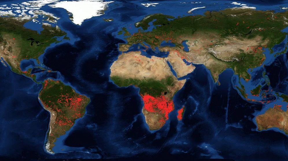 Foto: Comparación de los incendios activos en las últimas 24 horas. (NASA)