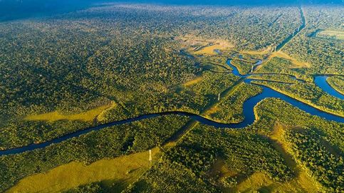 Nestlé pone satélites para controlar el aceite de palma tras estar a punto de perder su sello
