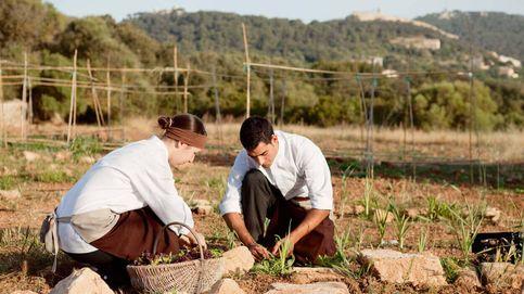 Restaurantes sostenibles: la receta de la alta cocina para cuidar del planeta