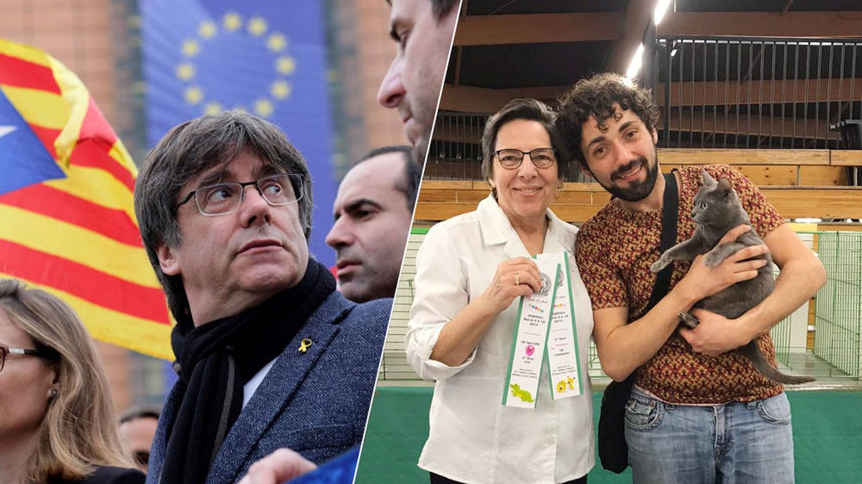 Perros, gatos y Mireille: los insólitos enemigos de Puigdemont en Perpiñán