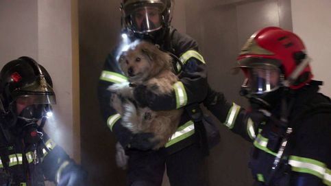 Sevilla impide a cuatro bomberos dar a conocer su trabajo en Cuatro