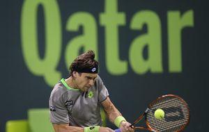 Ferrer y García-López se citan en los cuartos del torneo de Auckland