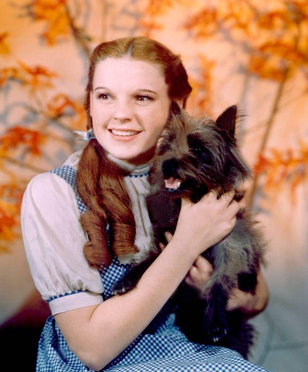 Foto: Judy Garland en 'El Mago de Oz'. (Cordon Press)