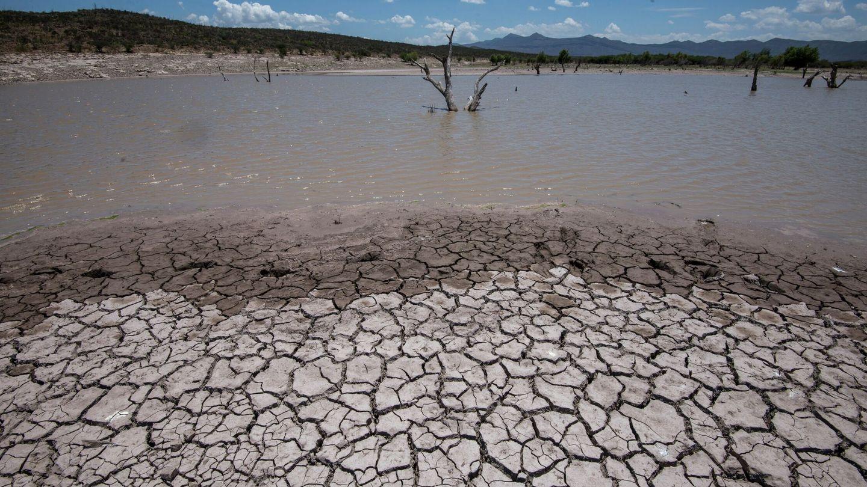 En determinadas zonas, las lluvias han sido anormalmente escasas. Foto: EFE