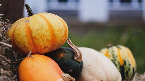 Ahora que llega el otoño apunta estos alimentos para cuidar tu línea y adelgazar