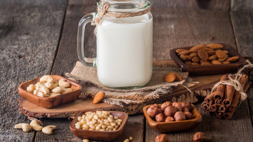 ¿Se pueden hacer leches vegetales en casa?