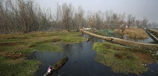 Post de Las súper bacterias se hacen fuertes en el río