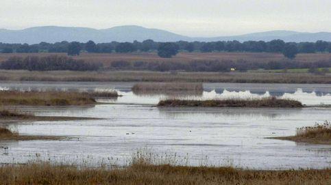 Más de 6.500 voluntarios mejoraron los ecosistemas marinos y fluviales