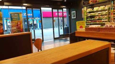 Una gaviota británica hace un 'sinpa' en un supermercado