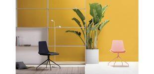 Post de Kimmi Collection: una silla para todos los ambientes