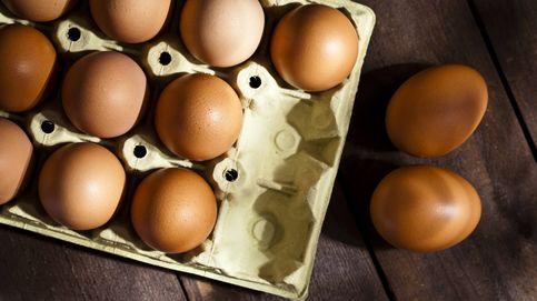 Día Mundial del Huevo: curiosidades del alimento natural más completo