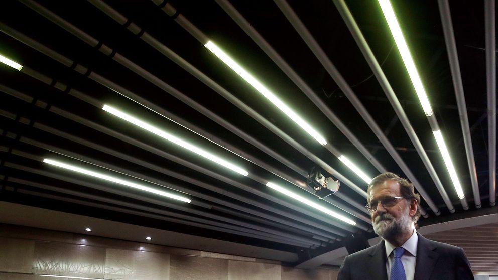 El Gobierno: La calificación de las conductas de Puigdemont corresponde a los juzgados