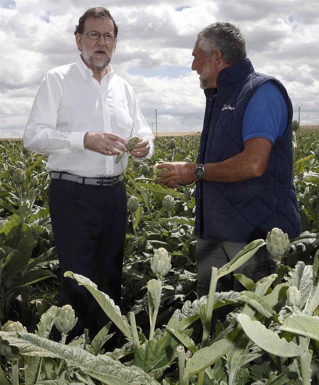 Foto: Mariano Rajoy, durante la visita a una finca de cultivo de alcachofas. (EFE)