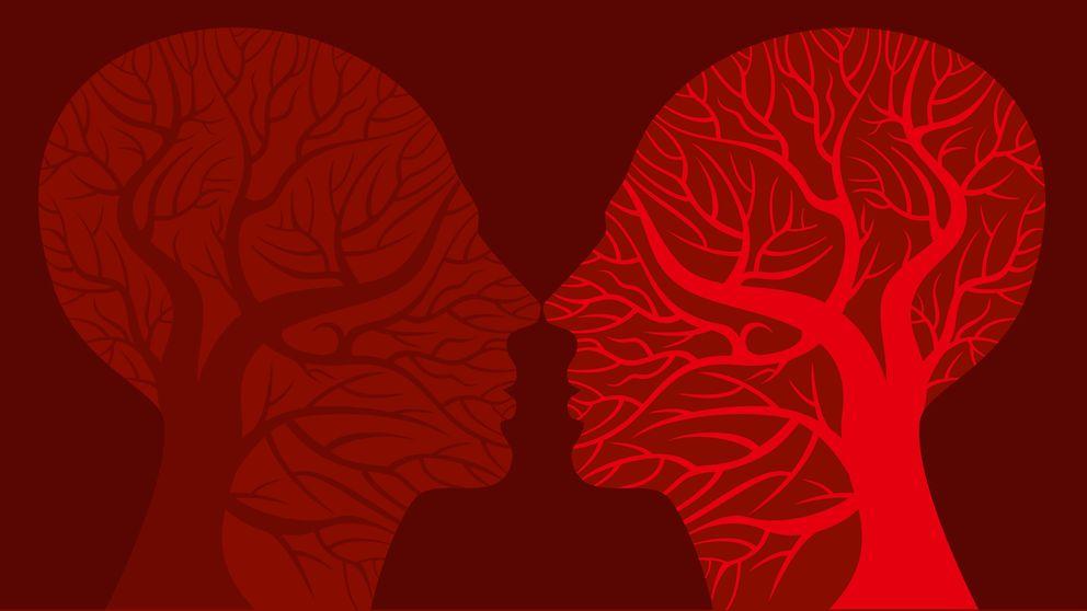 Las neuronas del placer: así funciona el circuito de recompensa cerebral