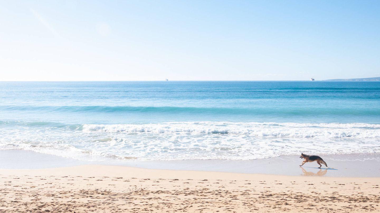 Playa de Can Pere Antoni (Fuente: iStock)