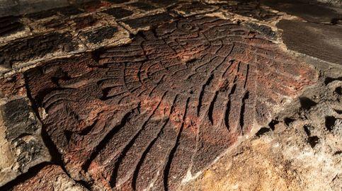 Hallan en Tenochtitlán el águila real sobre la que se fundó el imperio azteca