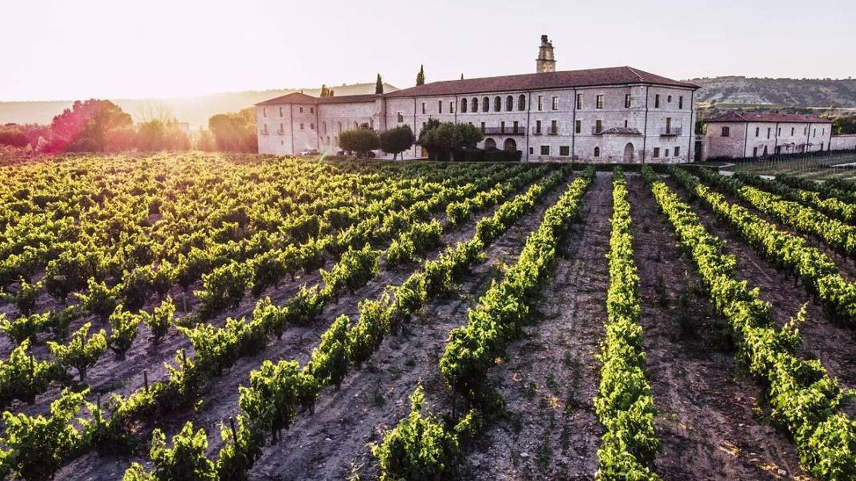 Los viñedos de Abadía Retuerta LeDomaine, en serio peligro.