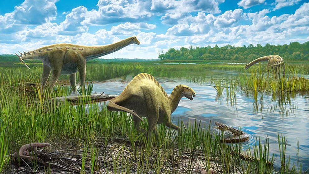 Así vivían dinosaurios y cocodrilos en Cuenca