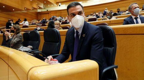 Vídeo   Siga en directo la sesión de control al Gobierno en el Senado