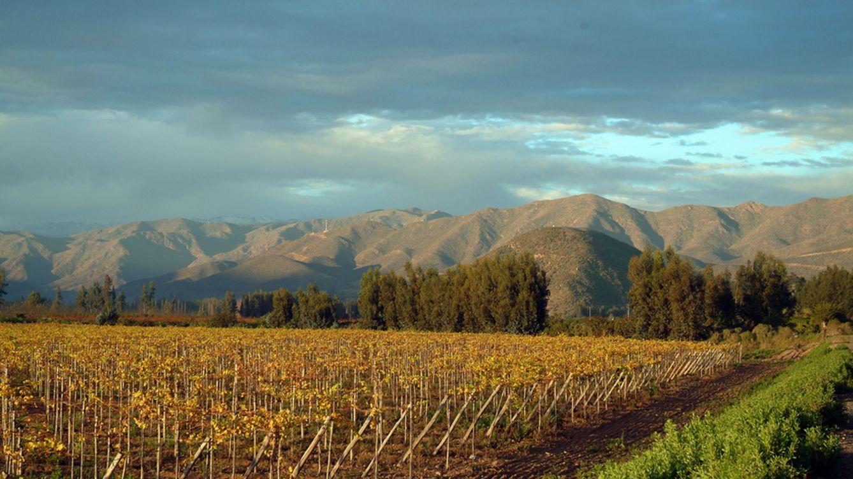 De ruta y vinos por las Rias Baixas