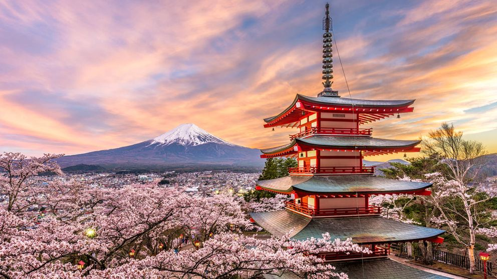 Las soluciones que está empleando Japón para combatir la despoblación