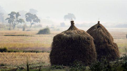 La vida de las tribus en India