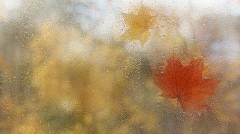 El tiempo en Las Rozas de Madrid: previsión meteorológica de mañana, viernes 23 de octubre