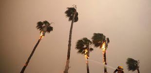 Post de Ascienden a 23 los muertos en los incendios que arrasan California