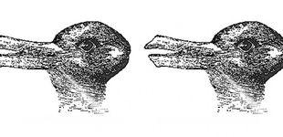 Post de ¿Ves un conejo o un pato? La imagen que demuestra cómo funciona tu cerebro
