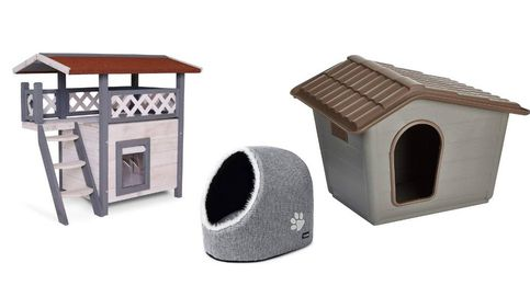 Las mejores casas para gatos adultos y gatitos