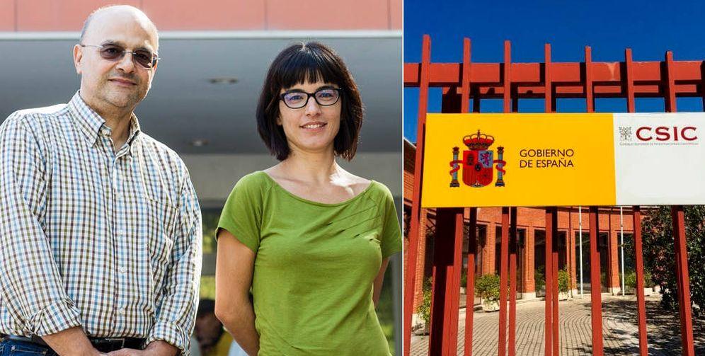 Foto:  Luis Ventura García y Lorena Gómez (Fundación BBVA / CSIC)