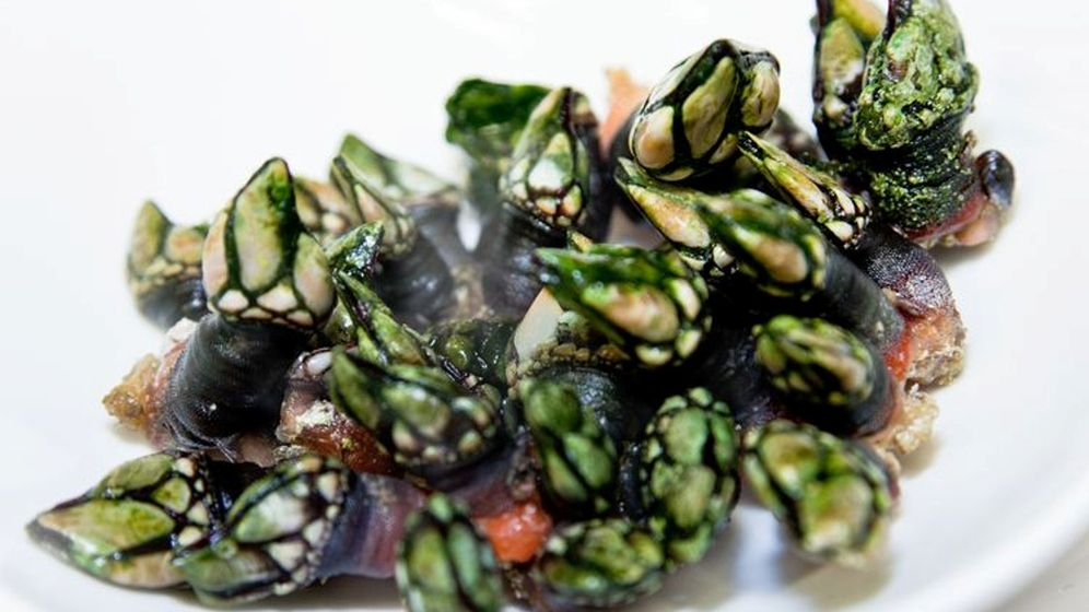 Restaurantes con estrella Michelin: Zarate, buenos pescados frescos ...