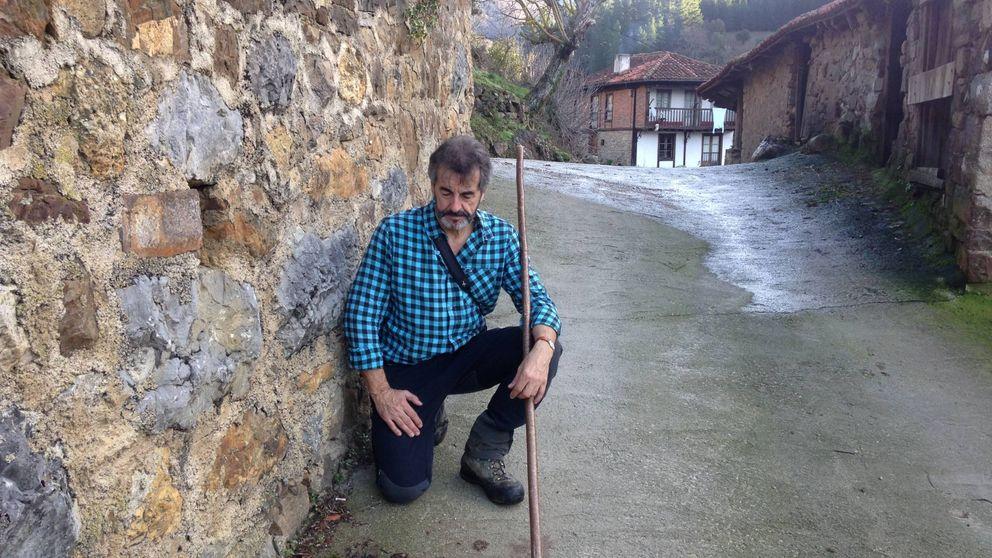 El oso pardo que mantiene en alerta a 15 pueblos de Cantabria: Pasea por las calles
