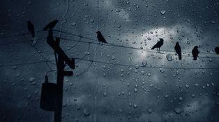 ¿Es verdad que internet se ralentiza cuando llueve?